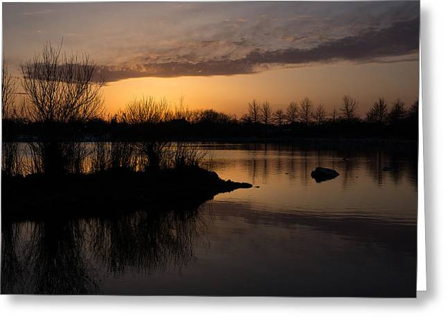 Willow Lake Greeting Cards - Sundown with Bare Branches Greeting Card by Georgia Mizuleva
