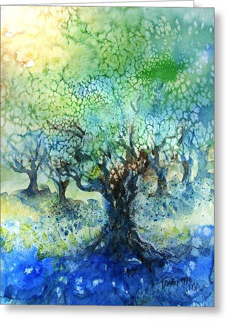 Sienna Italy Greeting Cards - Sundrenched Olive Grove   Greeting Card by Trudi Doyle