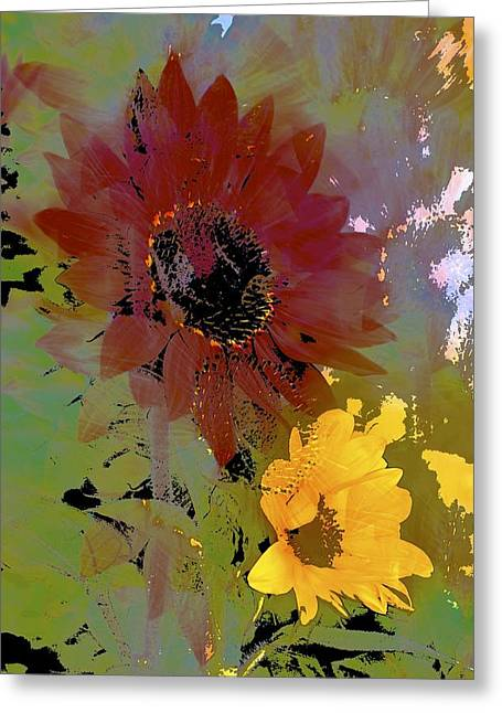 Pamela Cooper Greeting Cards - Sunflower 33 Greeting Card by Pamela Cooper