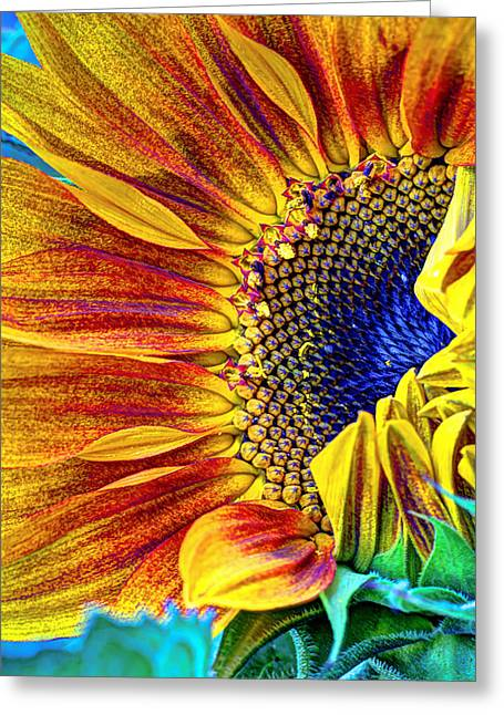 Recently Sold -  - Harvest Art Greeting Cards - Sunflower Abstract Greeting Card by Heidi Smith