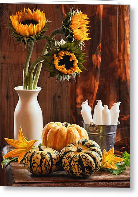 Harvest Photographs Greeting Cards - Sunflower and Gourds Still Life Greeting Card by Amanda And Christopher Elwell