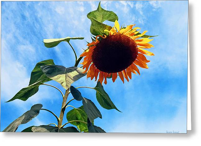 Gardening Greeting Cards - Sunflower and Sky Greeting Card by Susan Savad