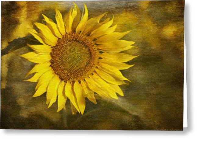 Sunflower And Sunshine  Greeting Card by Ivelina G
