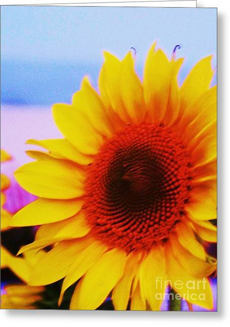 Floral Greeting Cards - Sunflower at Beach Greeting Card by Eric  Schiabor