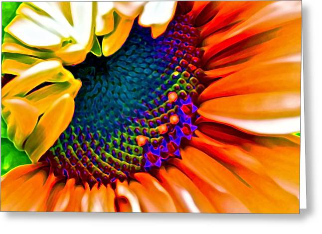Red Photographs Digital Greeting Cards - Sunflower Crazed Greeting Card by Gwyn Newcombe