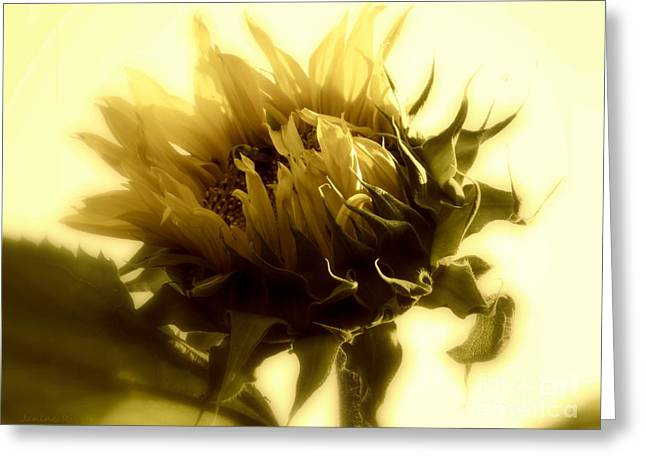 Girasol Greeting Cards - Sunflower - Fare thee well Greeting Card by Janine Riley