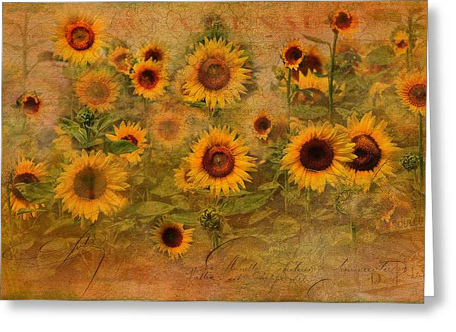 Graphics Framed Prints Greeting Cards - Sunflower Garden Greeting Card by Melinda Dreyer