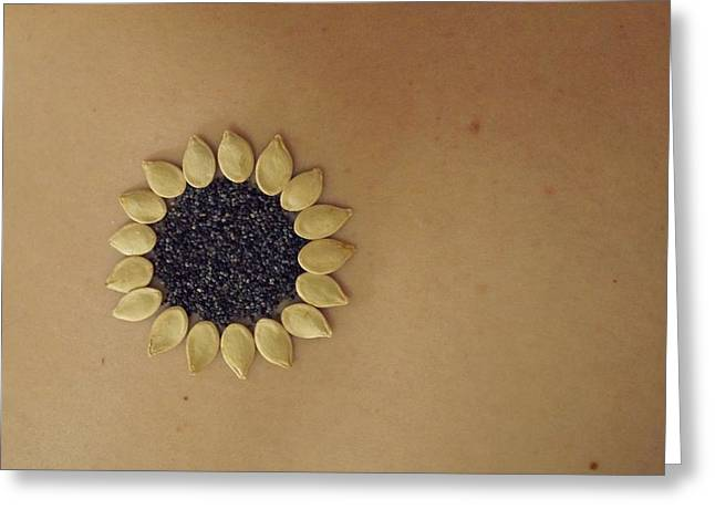 Local Food Greeting Cards - Sunflower Greeting Card by Jon Simmons
