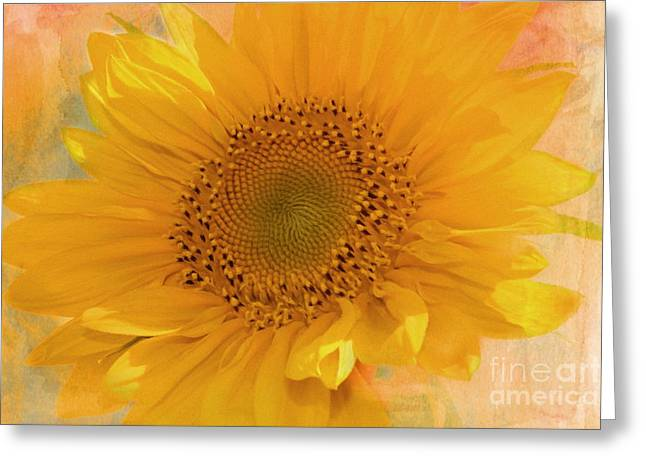 Textured Floral Greeting Cards - Sunflower Kisses Greeting Card by Georgiana Romanovna