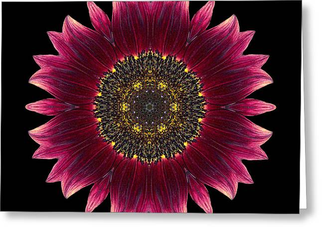 Sunflower Moulin Rouge I Flower Mandala Greeting Card by David J Bookbinder