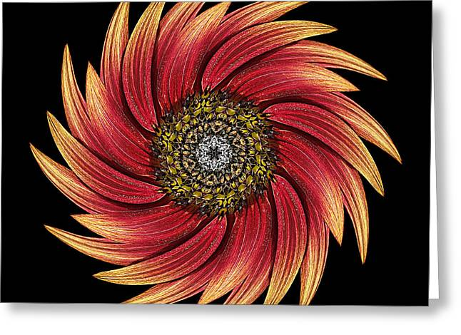 Sunflower Moulin Rouge Ix Flower Mandala Greeting Card by David J Bookbinder