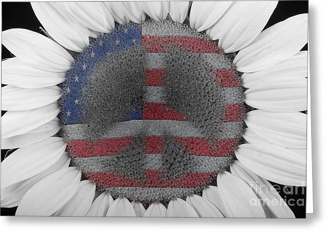 Americano Greeting Cards - Sunflower Peace Out Greeting Card by James BO  Insogna