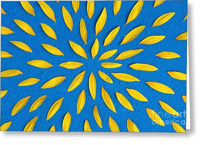 Powder Greeting Cards - Sunflower petals pattern Greeting Card by Tim Gainey