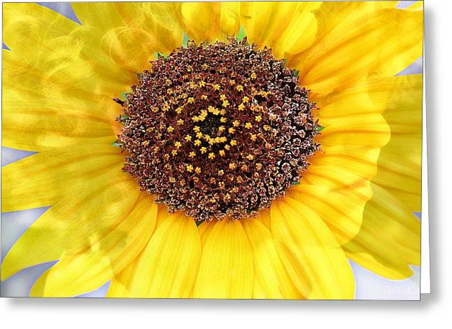 Pixy Greeting Cards - Sunflower Pixie Greeting Card by Barbara Chichester