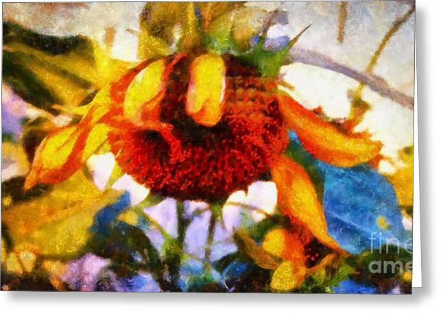 Girasol Greeting Cards - Sunflower Tender Greeting Card by Janine Riley