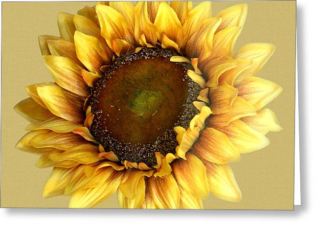 Sunflower Greeting Card by Tom Romeo