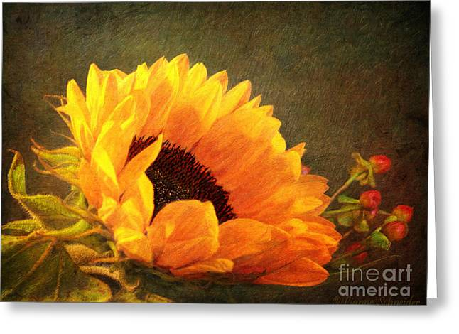 Annuals Greeting Cards - Sunflower - You Are My Sunshine Greeting Card by Lianne Schneider