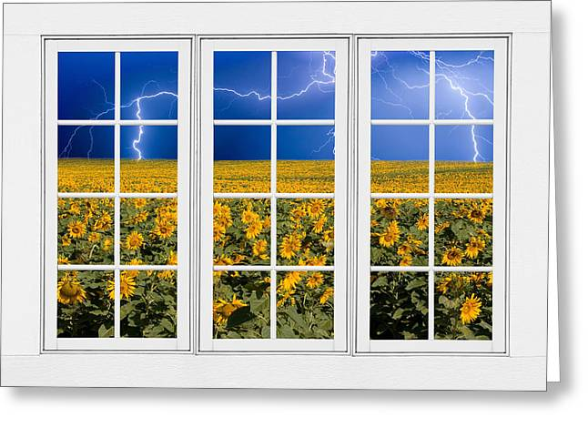 Storm Prints Photographs Greeting Cards - Sunflowers and Lightning 24 Pane Window View Greeting Card by James BO  Insogna