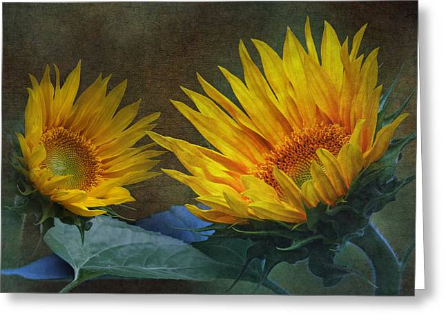 Enhanced Greeting Cards - Sunflowers Greeting Card by Angie Vogel