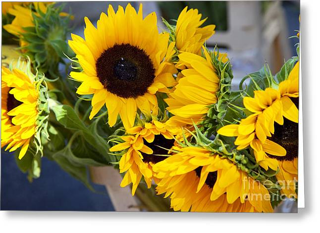 Saint-remy De Provence Greeting Cards - Sunflowers at Market Greeting Card by Brian Jannsen