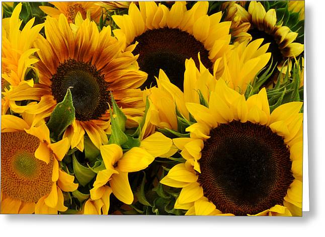 Union Square Greeting Cards - Sunflowers at Union Square Farmers Market Greeting Card by Diane Lent