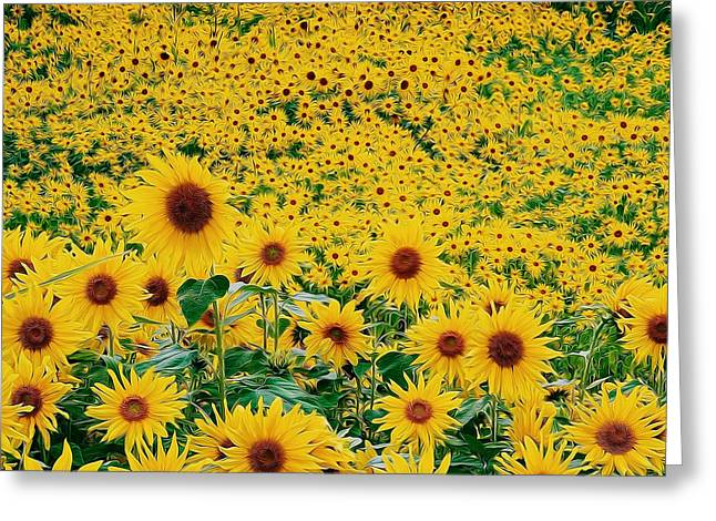 Agronomy Paintings Greeting Cards - Sunflowers Background Greeting Card by Lanjee Chee