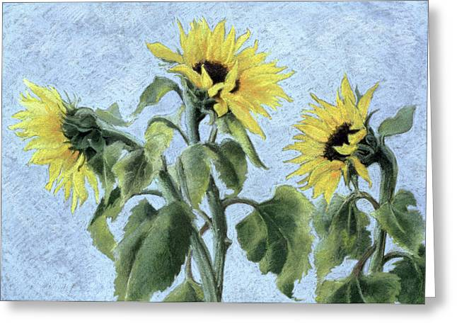 Feminine Pastels Greeting Cards - Sunflowers Greeting Card by Cristiana Angelini