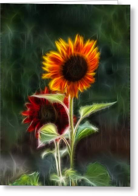 Methow Valley Greeting Cards - Sunflowers in the Rain Greeting Card by Omaste Witkowski