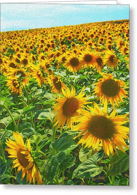 Overcast Day Digital Art Greeting Cards - Sunflowers Greeting Card by Jaroslav Frank