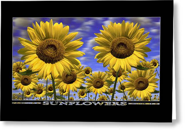 Show Print Greeting Cards - Sunflowers Show Print Greeting Card by Mike McGlothlen