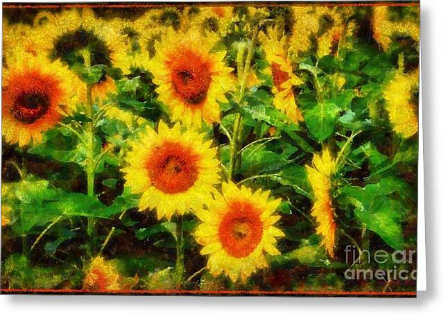 Sunflowers Parade In A Field Greeting Card by Janine Riley