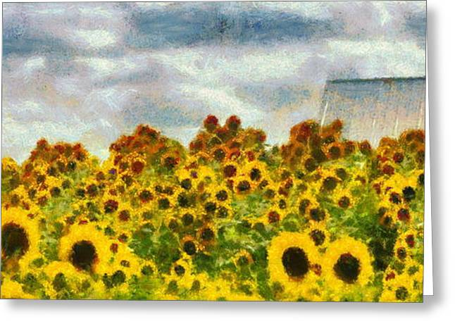 North Fork Digital Greeting Cards - Sunflowers  Greeting Card by Richard Worthington