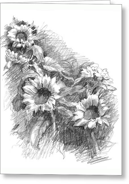 Residential Drawings Greeting Cards - Sunflowers Greeting Card by Sarah Parks