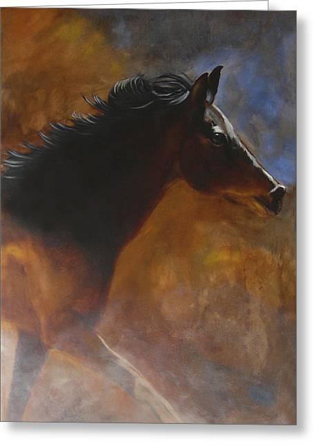 Quarter Horse Greeting Cards - Sunhorse Greeting Card by Jack Atkins