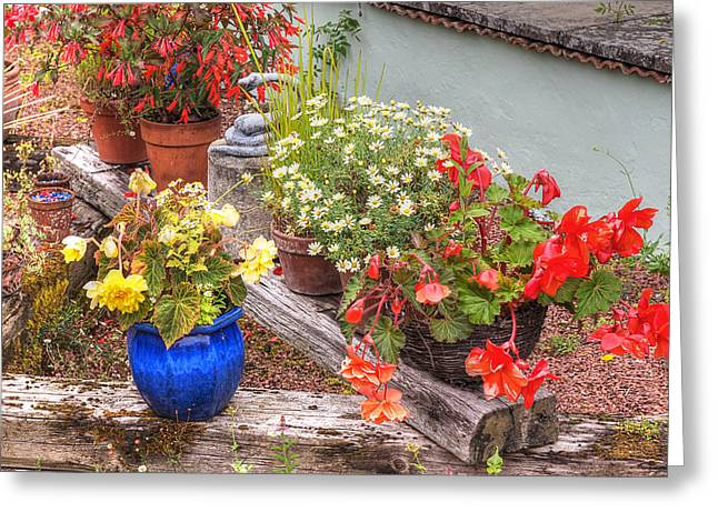 Garden Scene Greeting Cards - Sunken Kaleidoscope Garden Greeting Card by Gill Billington
