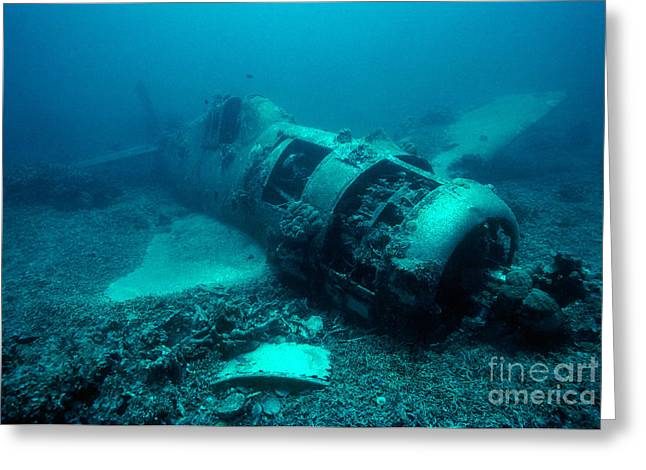 Military Airplanes Greeting Cards - Sunken US Hellcat Fighter Greeting Card by Michael McCoy