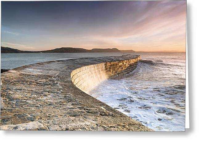 Sunkissed Cobb At Lyme Regis Greeting Card by Chris Frost