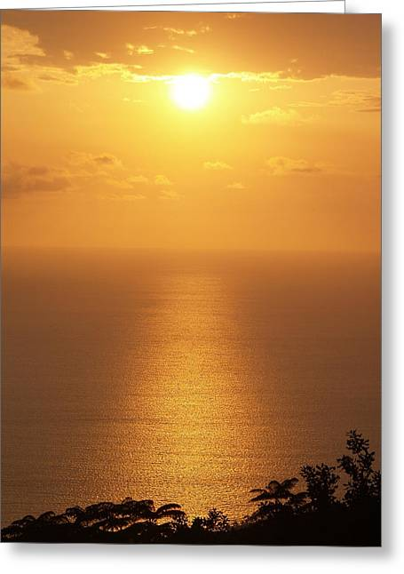 Tropical Oceans Greeting Cards - Sunlight Greeting Card by Athala Carole Bruckner