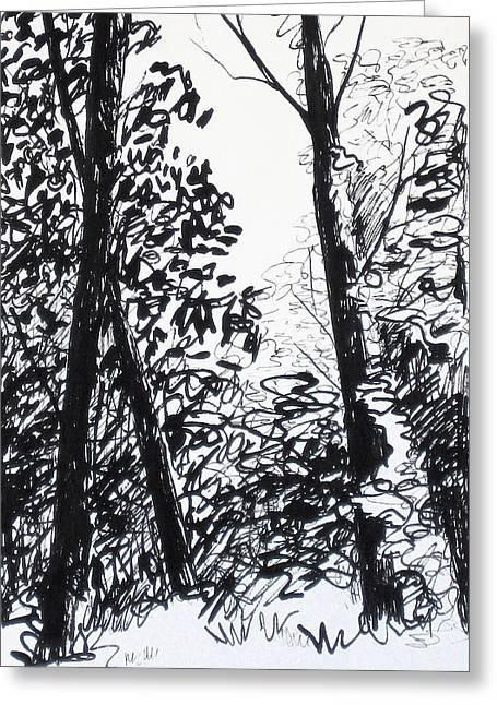 Garden Scene Drawings Greeting Cards - Sunlight in the Forest Greeting Card by Deborah Dendler