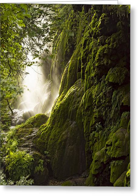 Shafts Of Light Greeting Cards - Gorman Falls Ray Of Light Greeting Card by Jonathan Davison