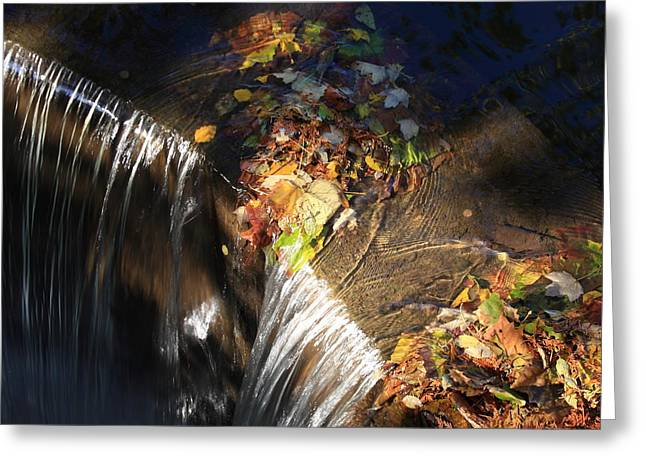 Natural Dam Greeting Cards - Sunlight on the Spillway Greeting Card by Lyle Hatch
