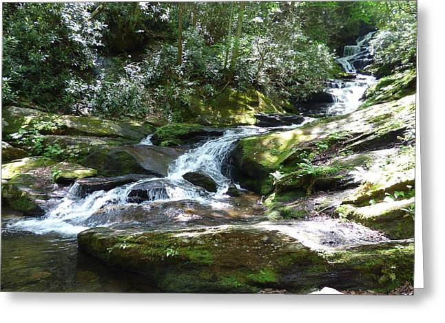 Roaring Fork Road Photographs Greeting Cards - Sunlight Water and Rocks - a symphony Greeting Card by Joel Deutsch