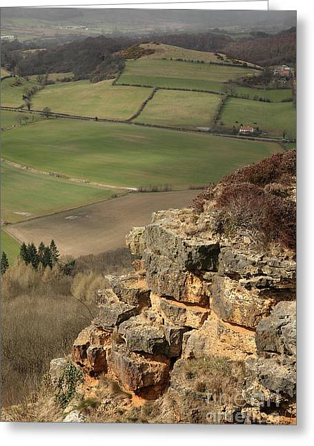 Sutton Farm Greeting Cards - Sunlit cliff Greeting Card by Deborah Benbrook
