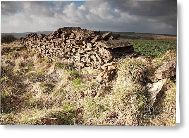 Sutton Farm Greeting Cards - Sunlit dry stone wall Greeting Card by Deborah Benbrook