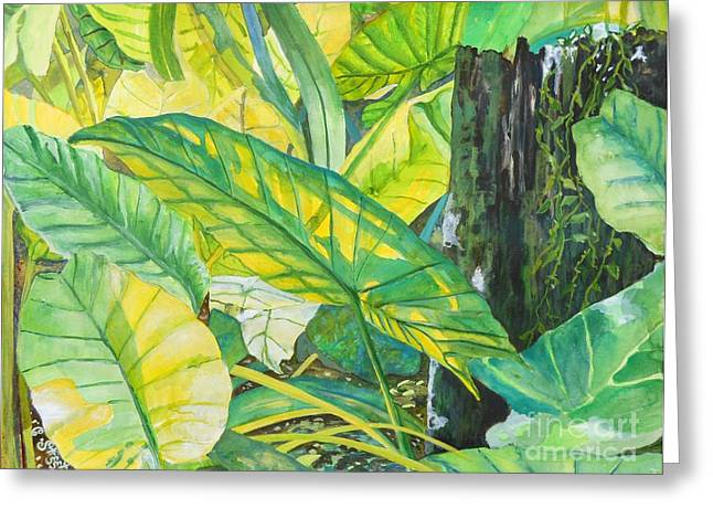 Carolinestreetart Greeting Cards - Sunlit Elephant Ears Greeting Card by Caroline Street