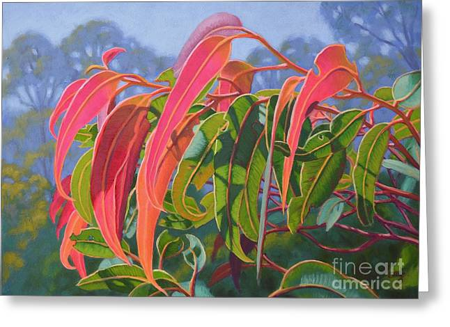 Australian Native Flora Greeting Cards - Sunlit Gumleaves 12 Greeting Card by Fiona Craig