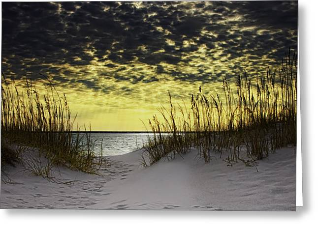 Destin Greeting Cards - Sunlit Passage Style Greeting Card by Janet Fikar