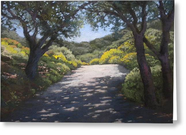 Sunlit Road Greeting Card by Maralyn Miller