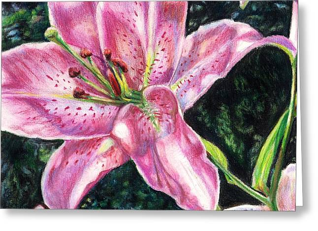 Stigma Drawings Greeting Cards - Sunlit Stargazer Greeting Card by Shana Rowe