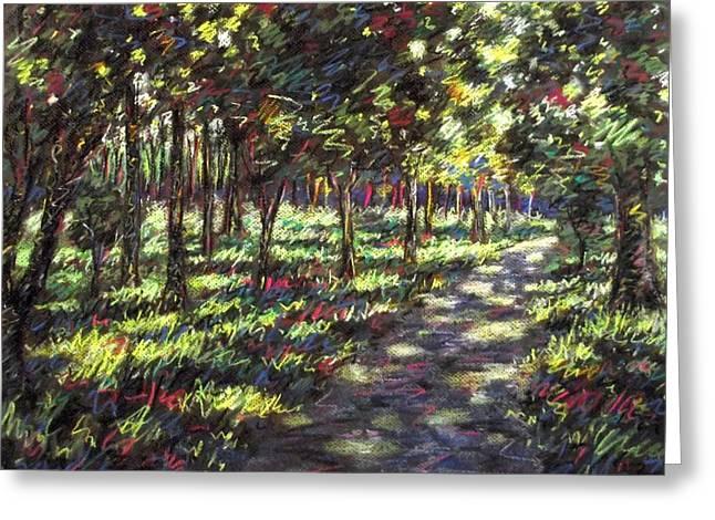 Sunlit Trees Greeting Card by John  Nolan